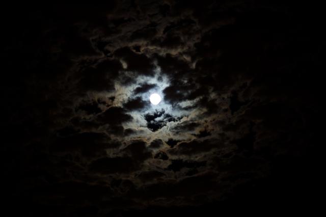 4248951-darkness